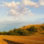 Prati aridi Monte Merlo_4 foto di Elio De Stefani